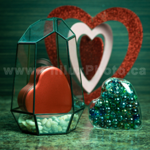 philux photo glass terrarium valentines heart calgary vancouver toronto